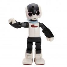Robi Full-Kit | Robot