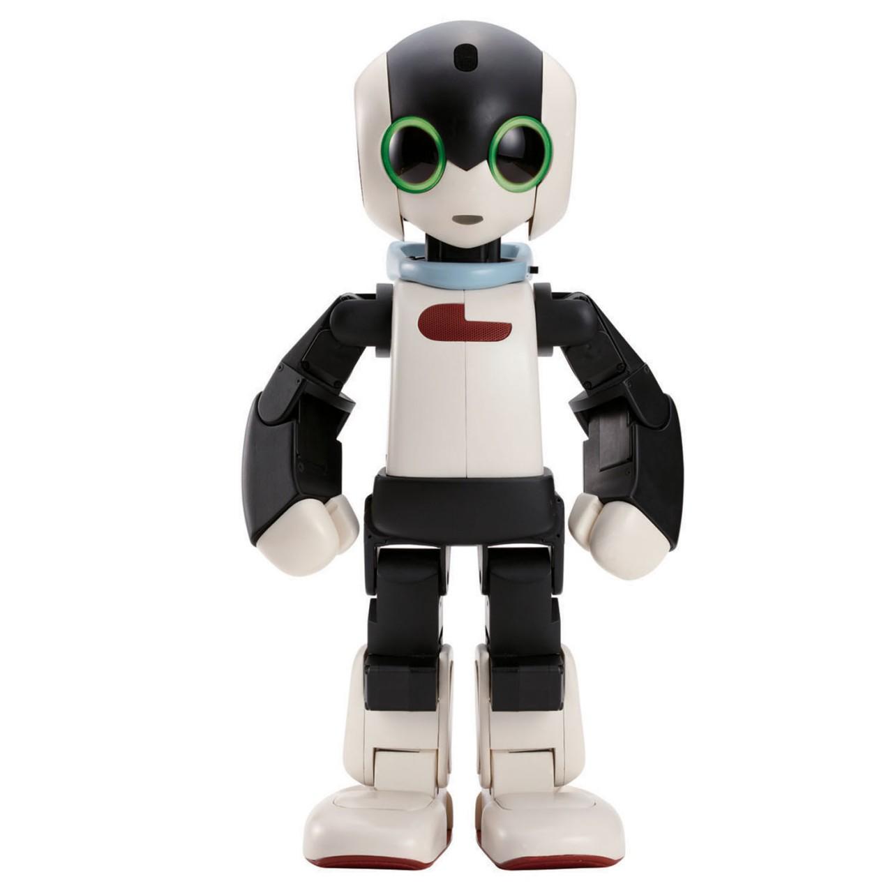 Robi Full Kit Robot