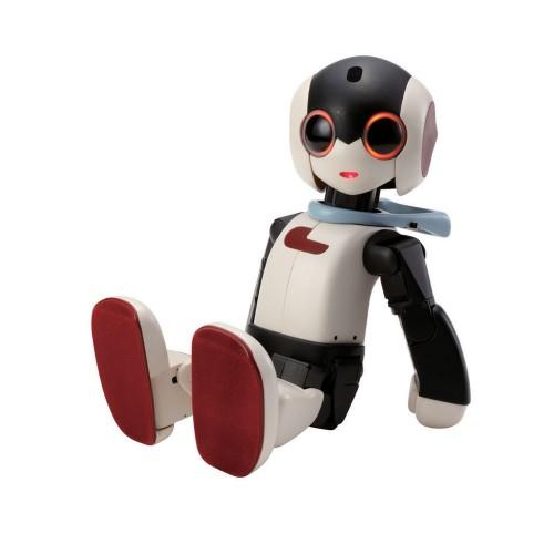 Robi Full-Kit   Robot
