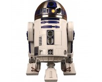 Build R2-D2 | 1:2 Scale | Premium Full Kit