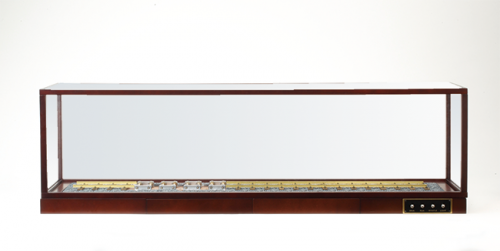 D51 Locomotive Display Stand