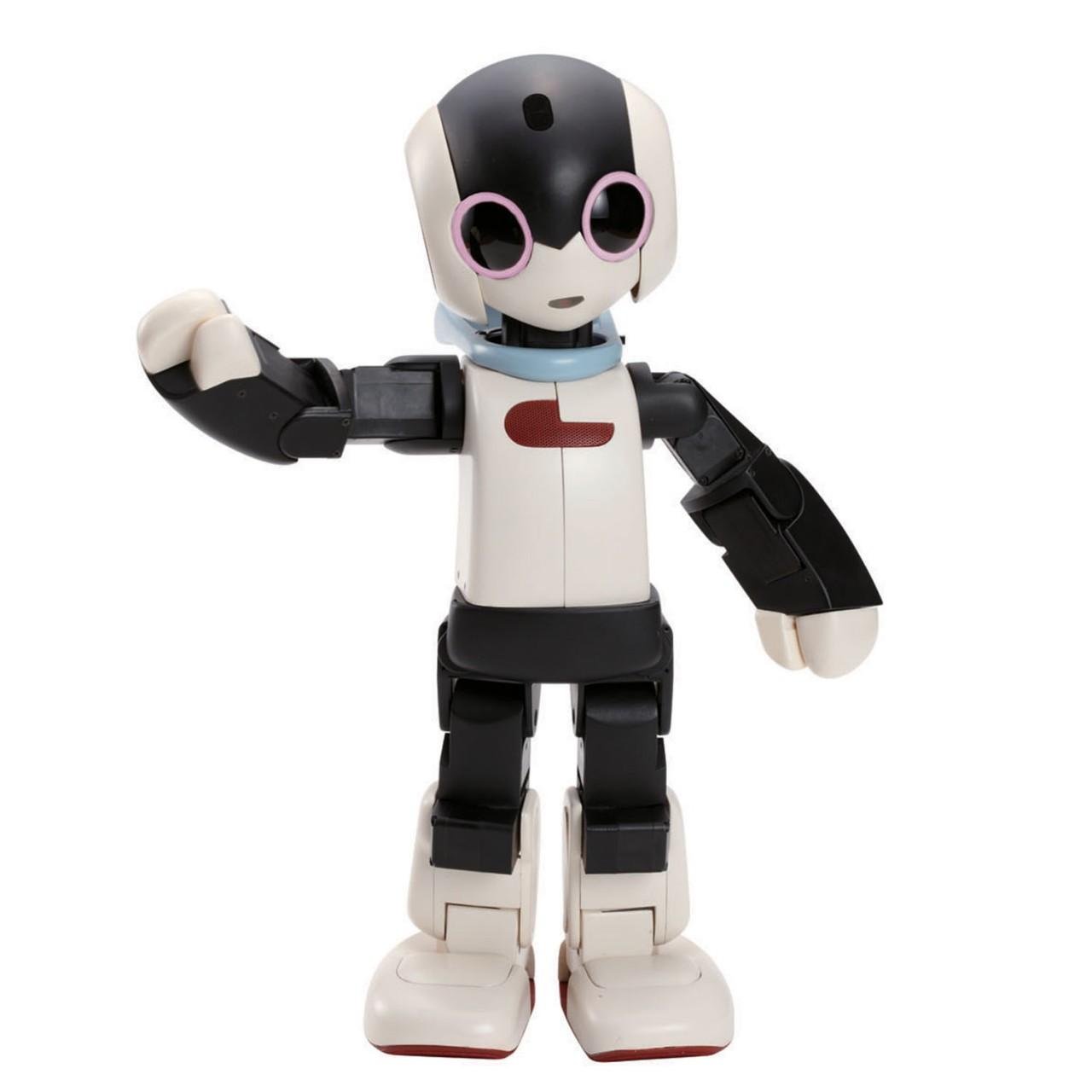 robot kit to build