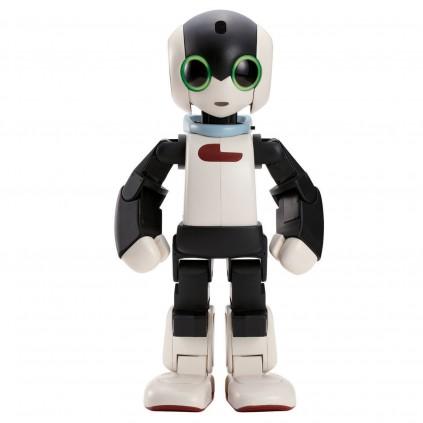Robi ist ein hochentwickelter Roboter mit unzähligen und erstaunlichen Funktionen.