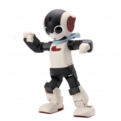 ROBI | Roboter | Komplett-Set
