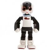 Costruisci il Tuo Robot Robi